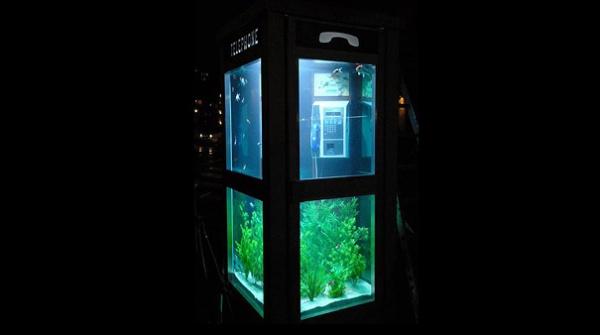 Aquarium Telefonzelle