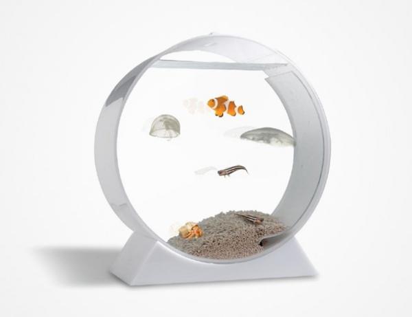 Aquarium fuer Quallen 1