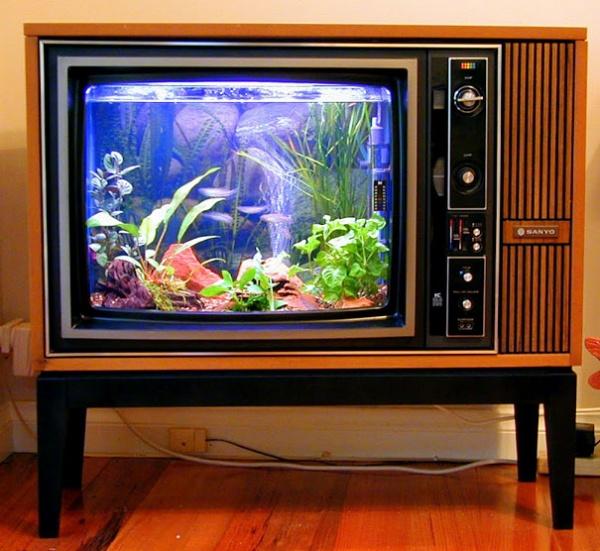 Aquarium im alten TV-Apparat