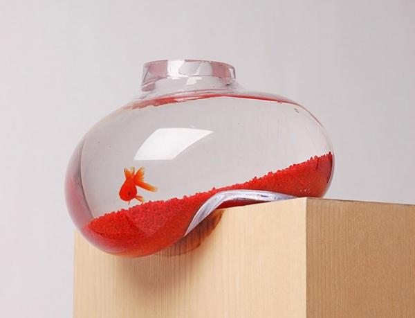 Balancing Aquarium