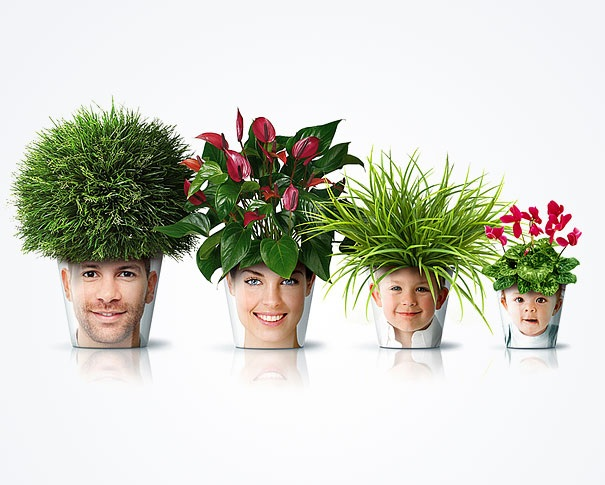 Blumentopf mit Haarfrisur
