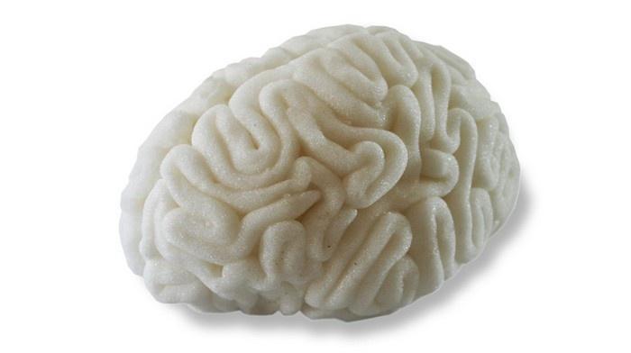Essbares Gehirn 4