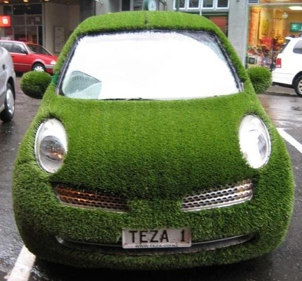 Grassy Auto