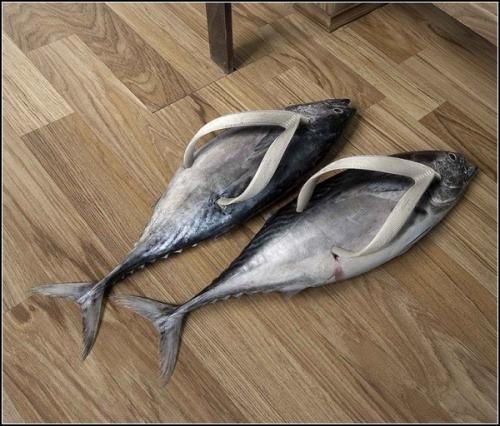 Hausschuhe als Fische