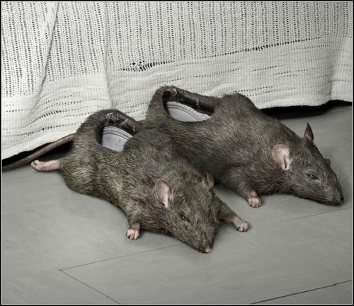 Hausschuhe als Ratten