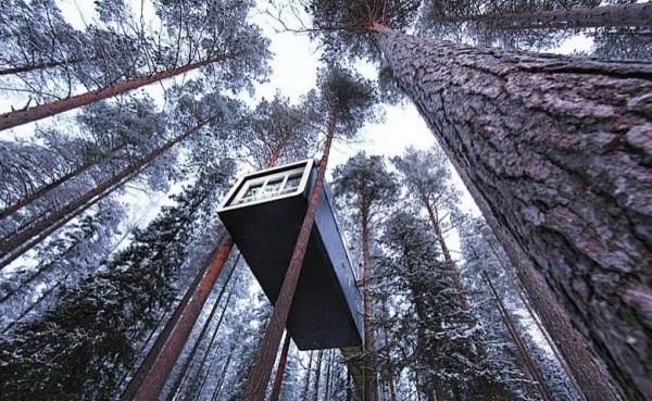 Hotel auf dem Baum 2