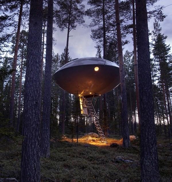 Hotel auf dem Baum 3