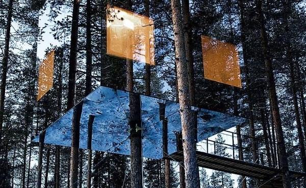 Hotel auf dem Baum 4