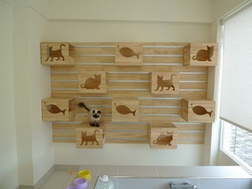 Katzenwand