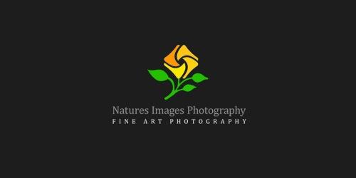 Logos aus Fotostudios 11