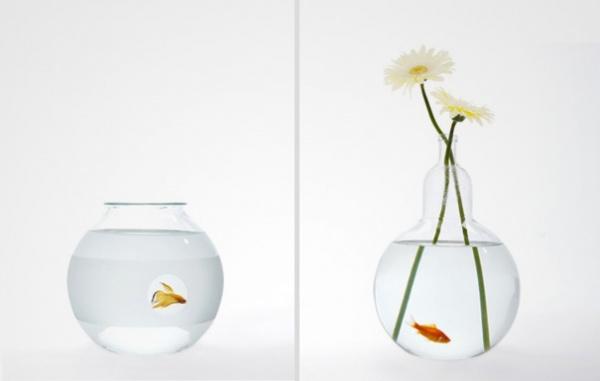 Multifunktionales Aquarium