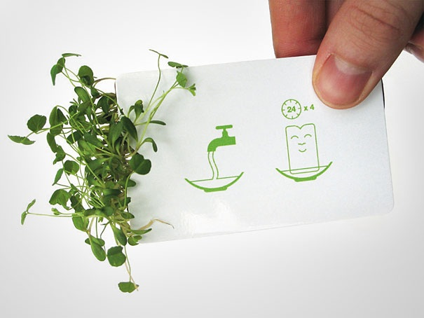Visitenkarte als Blumentopf