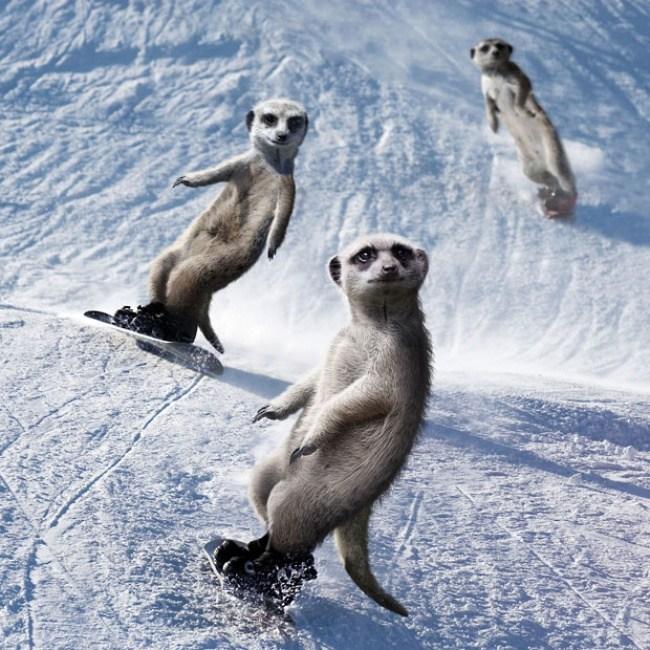 Dezember - Ende des Jahres und ein wenig Snowboard