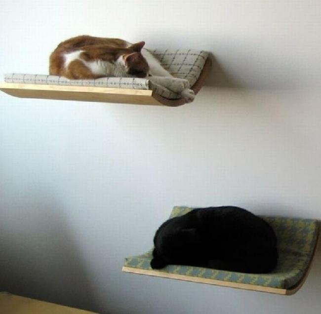 Betten als Regale für Katzen