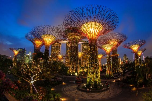 Botanische Bay Gärten von Singapur  1