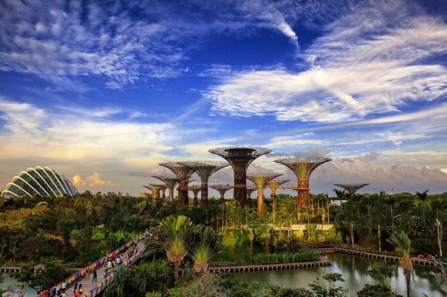 Botanische Bay Gärten von Singapur 12