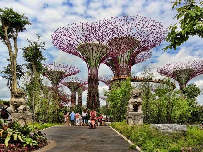 Botanische Bay Gärten von Singapur 13