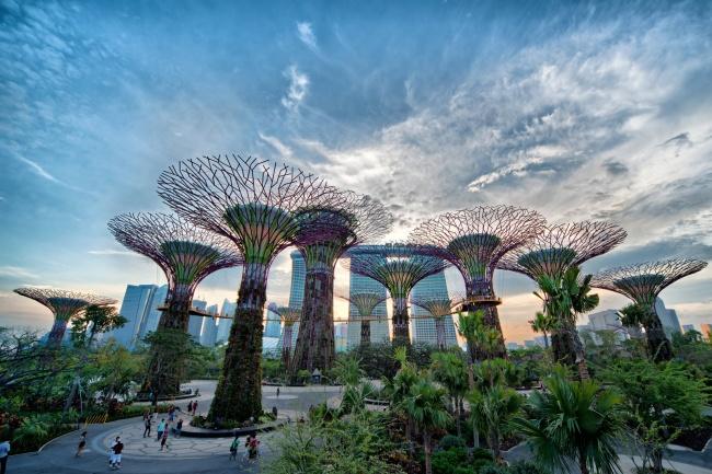 Botanische Bay Gärten von Singapur  2