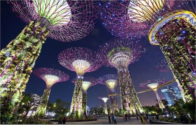 Botanische Bay Gärten von Singapur 4