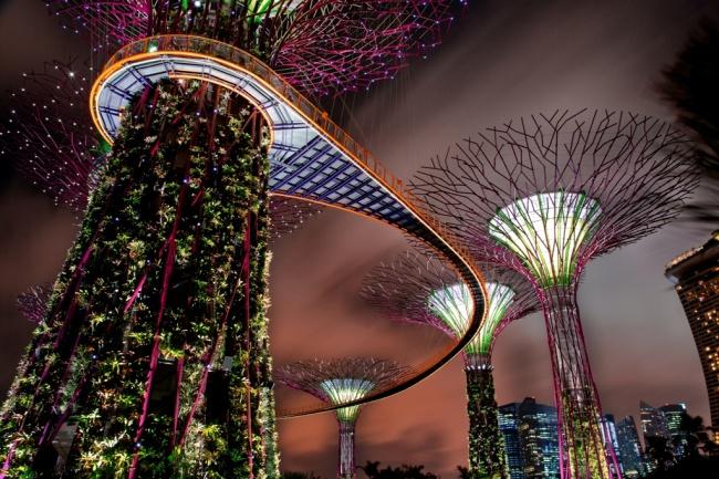 Botanische Bay Gärten von Singapur 5