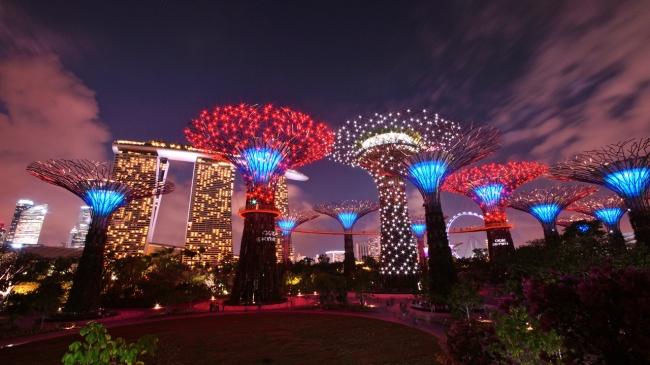 Botanische Bay Gärten von Singapur 7