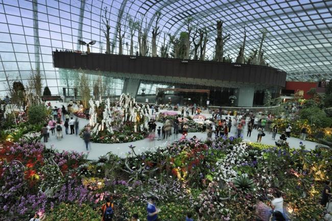 Botanische Bay Gärten von Singapur 9