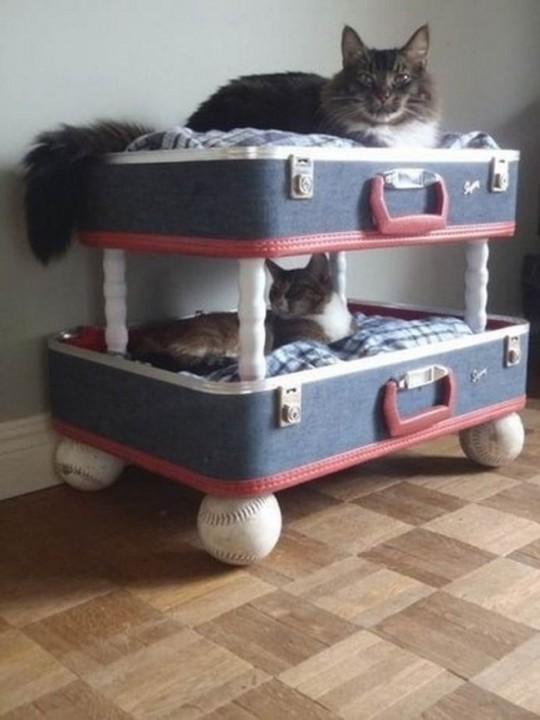 Etagenbett aus einem alten Koffer