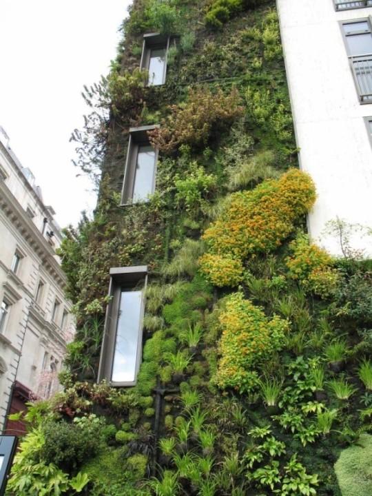 Les Halles, Paris 1