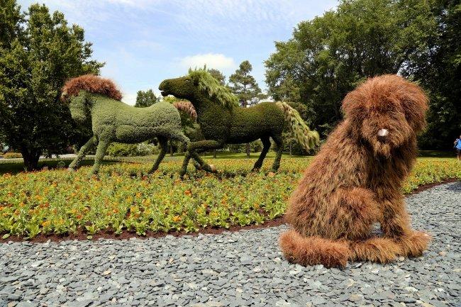 zottiger Hund Skulpture
