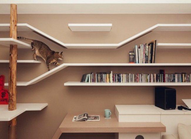 Design-Raum fuer Menschen und Katzen in Taiwan