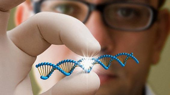 Berater fuer Genetik und Medizin