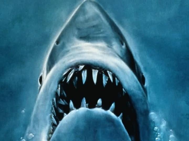 Der weisse Hai 1975, USA