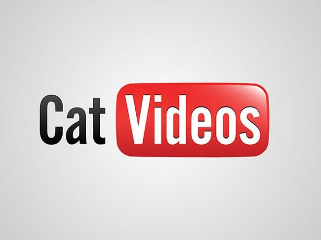 YouTube. Videos mit Katzen