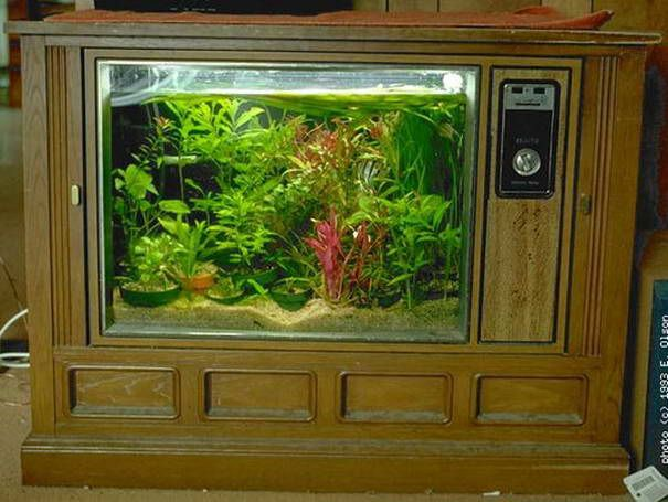Alten TV-Aquarium