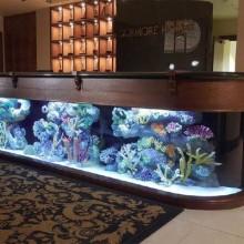 Rezeption aquarium