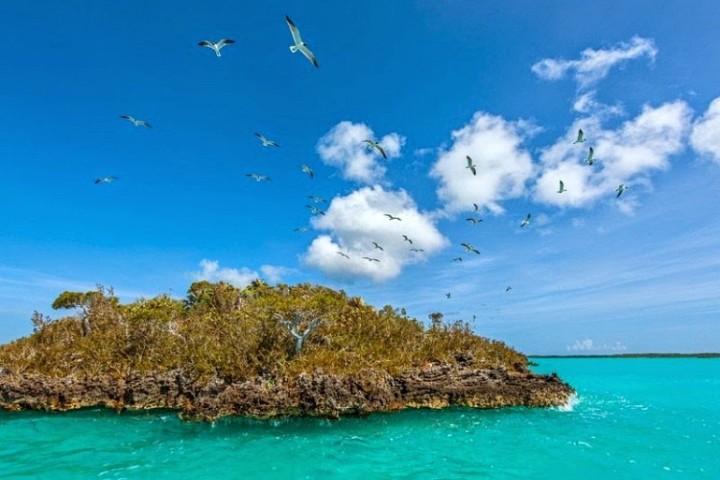 Schönheit der Lagune Chalk Sound 4