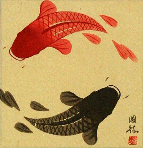 Yin Yan Yu