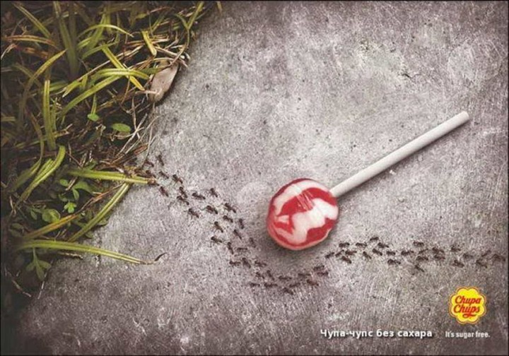 chuppa chips Ameisen