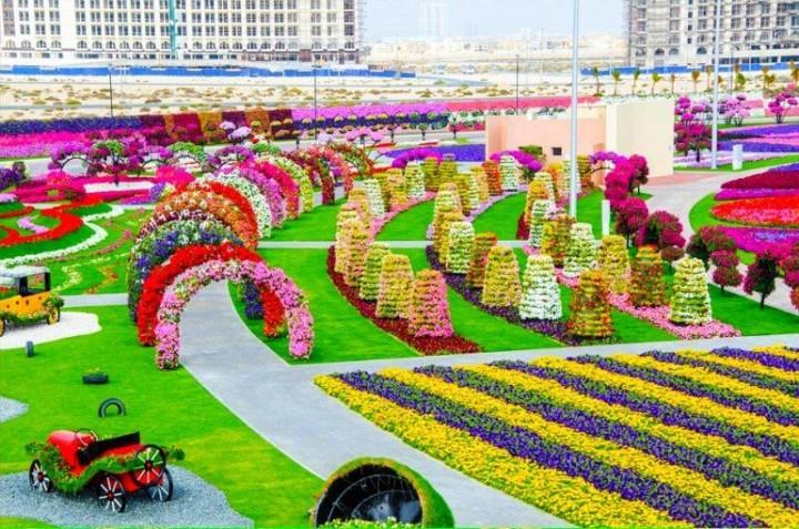 größte und schönste Blumengarten 6