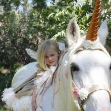 Halloween-Kostüme für Pferde Einhorn fee Kostüme