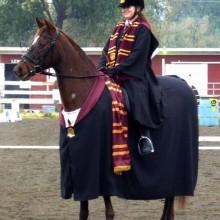 Halloween-Kostüme für Pferde, Harry Potter Kostüm für Pferd und Reiter
