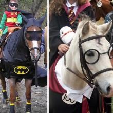 Halloween-Kostüme für Pferde batman Kostüm harry pooter Kostüm