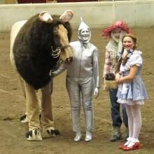 Halloween-Kostüme für Pferde der Zauberer von oz halloween-Kostüm-Ideen