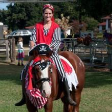 Halloween-Kostüme für Pferde kühl Pferd Kostüme für halloween, Piraten