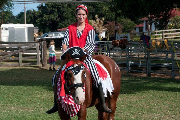 Halloween Kostüme für Pferde – kreative Ideen für die pet-Kostüme