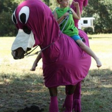 Halloween-Kostüme für Pferde lustige Kostüme für Pferd und Reiter