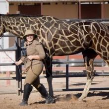Halloween-Kostüme für Pferde-safari Thema giraffe