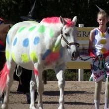Halloween-Kostüme für Pferde und Reiter, bunte polka dots