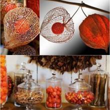 Herbst Deko-Ideen mit physalis kreativ-Herbst-Dekoration Natürliche Materialien