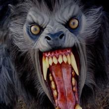 Realistische Halloween-Masken Ideen Werwolf-halloween Kostüme-Masken
